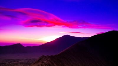 Nature_Purple